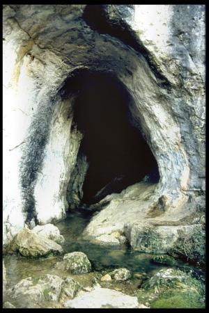 Blog de Christian Verduci, découvreur de La Grotte du Rouret, ( dite la Beaume Robert, depuis 1969